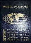 мировой паспорт